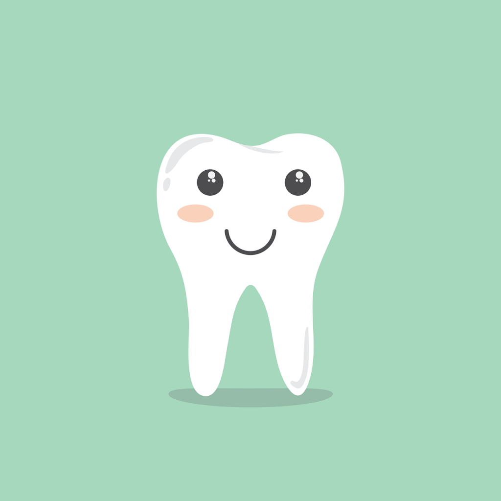 teeth-1670434_1280